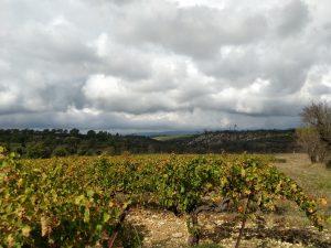 Un mariage en Provence en automne